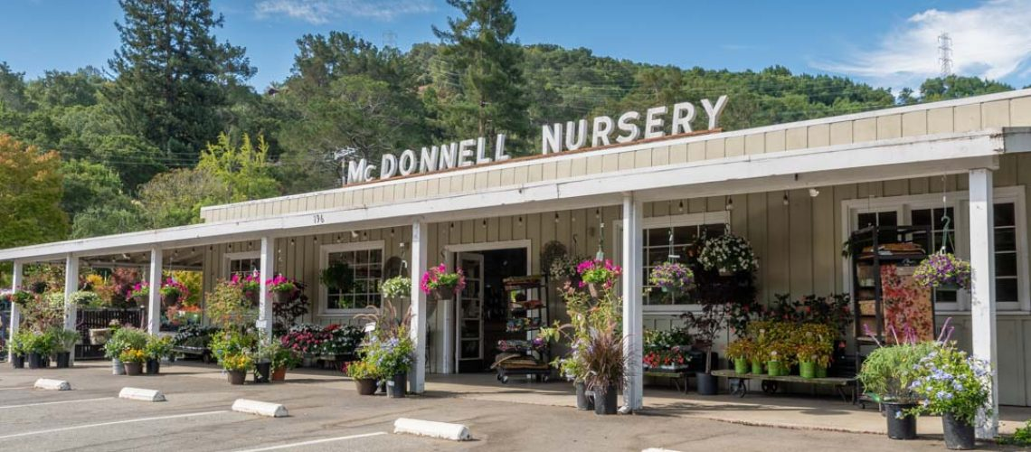 McDonnell Nursery Store Front-2