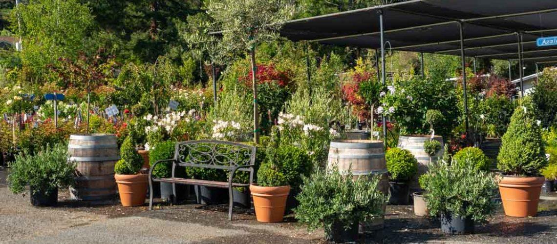 Merchandising display benches, barrels, plants