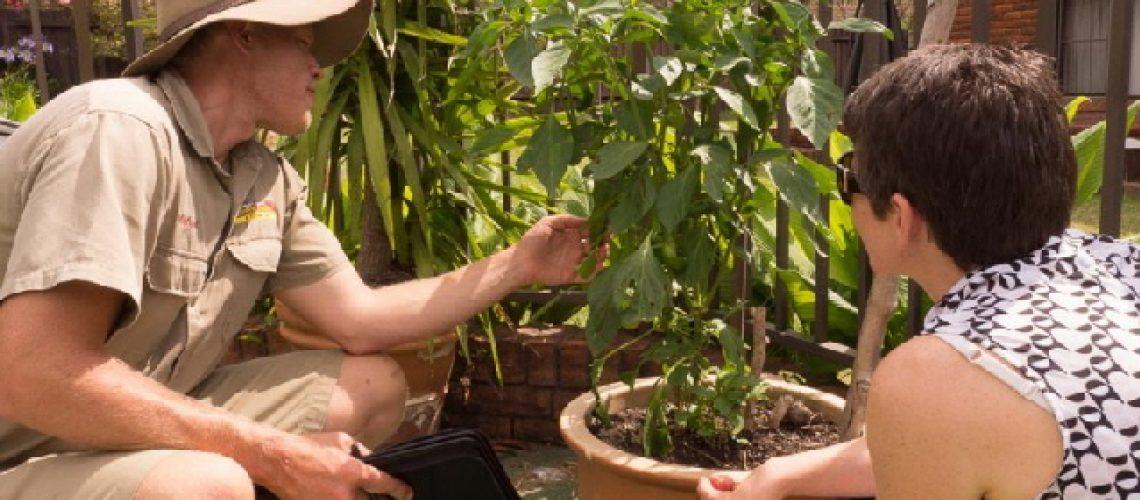 best-plant-nursery-near-me-bay-area-mcdonnell-nursery